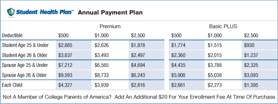 Annual payment plan